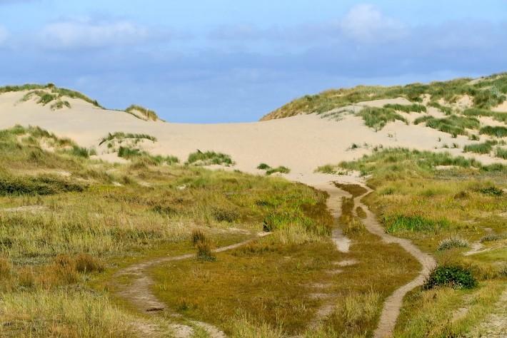 Duinen symbool voor Noord-Hollandse natuur